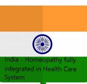 Indian flag2